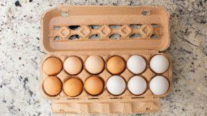 Dozen eggs in carton