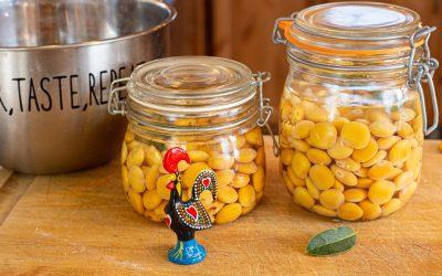 Tremoços | Lupini Beans